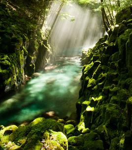 渓谷の光芒の写真素材 [FYI00172419]