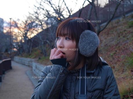 冬のカメラ散歩の写真素材 [FYI00173262]