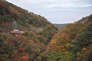 竜神ダムから見える紅葉の写真素材 [FYI00173495]