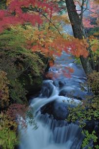 竜頭の滝の写真素材 [FYI00173538]