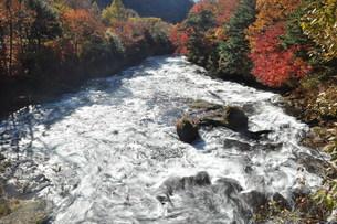 竜頭の橋から見た湯川の写真素材 [FYI00173548]