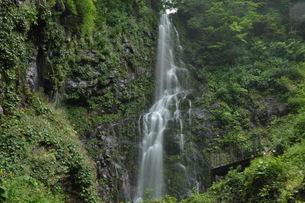 幕滝の写真素材 [FYI00173623]
