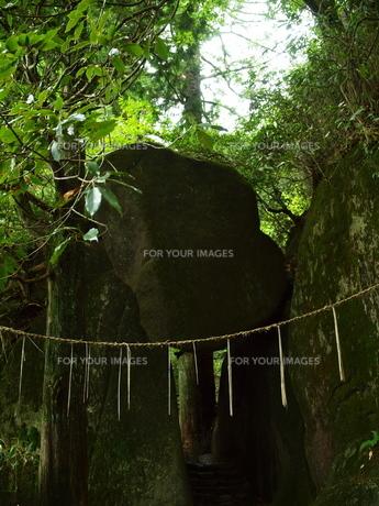 岩の祠の写真素材 [FYI00173669]