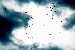 雲間の光の素材 [FYI00173695]