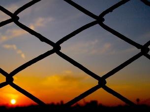 フェンス越しの夕陽の写真素材 [FYI00173711]