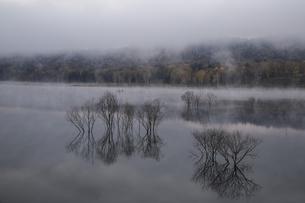 当別フクロウ湖の秋 の素材 [FYI00173999]