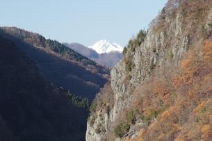 晩秋の五竜岳を遠望の写真素材 [FYI00174011]