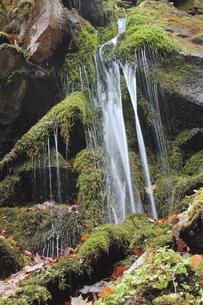 玉だれの滝の写真素材 [FYI00174012]