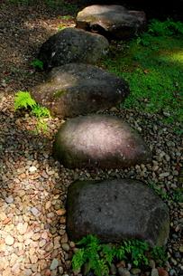 光受け止める石畳の写真素材 [FYI00174320]