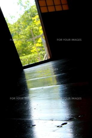 射し込む光の写真素材 [FYI00174357]