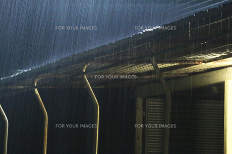 降り注ぐ雨の素材 [FYI00174879]