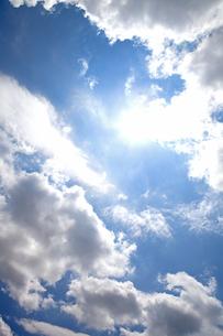 夏の日差しの写真素材 [FYI00174884]