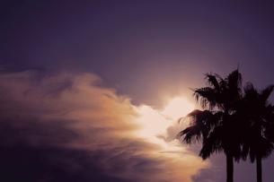熱帯夜の写真素材 [FYI00174886]