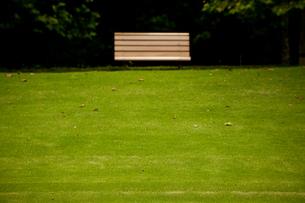 芝生とベンチの写真素材 [FYI00175564]