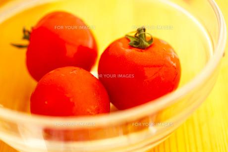 トマトの素材 [FYI00175774]
