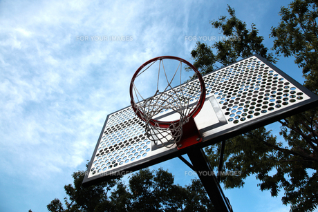 バスケットゴールの素材 [FYI00175814]