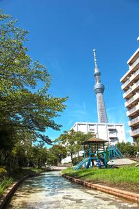 東京スカイツリーの写真素材 [FYI00175821]