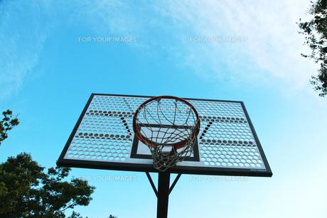 バスケットゴールの素材 [FYI00175824]