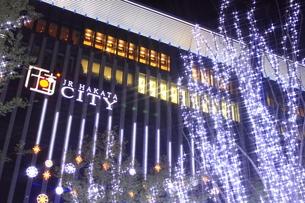 JR博多シティのイルミネーション夜景の写真素材 [FYI00176018]