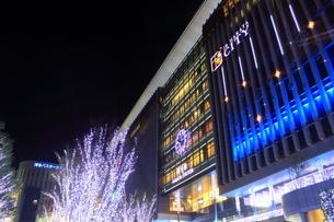 JR博多シティのイルミネーション夜景の写真素材 [FYI00176022]