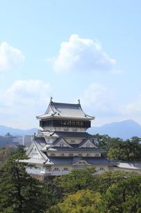 北九州市 小倉城の写真素材 [FYI00176070]