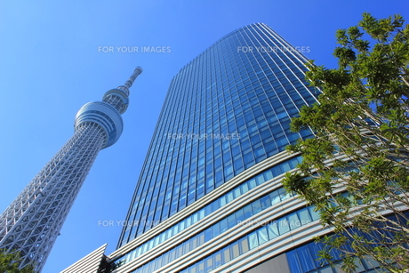 東京スカイツリーと東京ソラマチの写真素材 [FYI00176189]