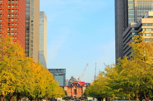 東京駅と丸の内ビル郡の素材 [FYI00176213]