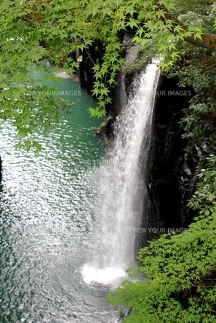 高千穂峡の素材 [FYI00176299]