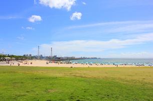沖縄 トロピカルビーチの素材 [FYI00176348]