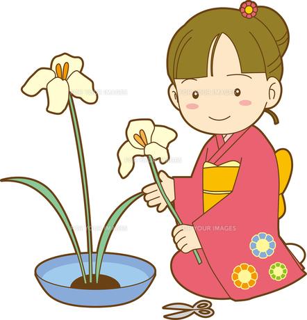 生け花をする女の子の写真素材 [FYI00176562]