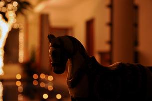 Indian Horseの写真素材 [FYI00176718]