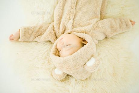 くまの着ぐるみで寝る赤ちゃんの写真素材 [FYI00176838]