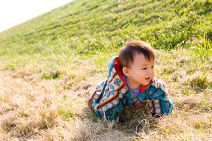 芝生でハイハイする赤ちゃんの写真素材 [FYI00176853]