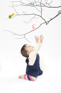 赤ちゃんと幸せの鳥の写真素材 [FYI00176855]