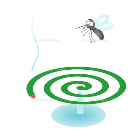蚊取り線香の写真素材 [FYI00176899]