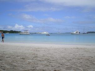 ニューカレドニアイルデパン島の写真素材 [FYI00177347]