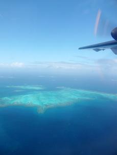 ニューカレドニア珊瑚礁の写真素材 [FYI00177401]