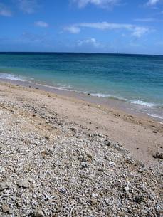 ニューカレドニア珊瑚の砂浜の写真素材 [FYI00177408]