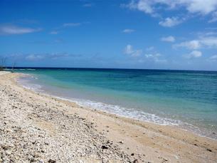 ニューカレドニアの珊瑚の砂浜の写真素材 [FYI00177415]