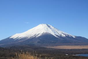 富士山の写真素材 [FYI00177521]