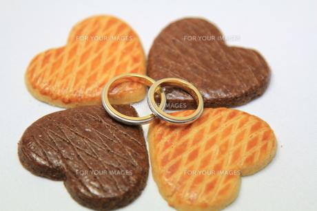 結婚指輪の写真素材 [FYI00177527]