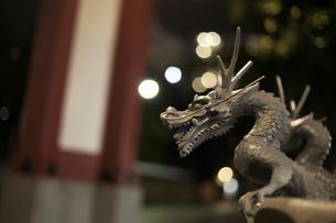 龍、ドラゴンの写真素材 [FYI00177846]