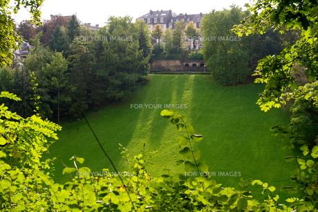 芝生は、青いの素材 [FYI00177862]