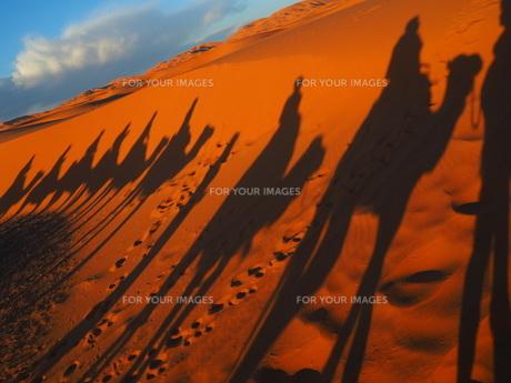 サハラ砂漠の素材 [FYI00177992]