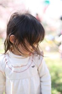 春風と女の子の写真素材 [FYI00178116]
