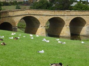 オーストラリア タスマニアにあるリッチモンド橋 Richmond Bridge の素材 [FYI00178154]
