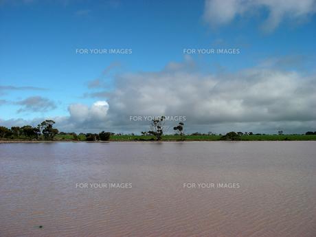 微生物によりピンク色に染まる西オーストラリアの湖 横位置の素材 [FYI00178163]