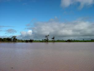 微生物によりピンク色に染まる西オーストラリアの湖 横位置の写真素材 [FYI00178163]