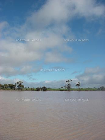 微生物によりピンク色に染まる西オーストラリアの湖の素材 [FYI00178168]
