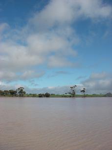微生物によりピンク色に染まる西オーストラリアの湖の写真素材 [FYI00178168]